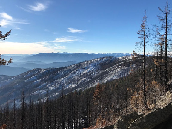 A view of the 2017 Abney Fire along the Siskiyou Crest. Photo courtesy of Luke Ruediger.