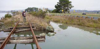 Railroad crossing completely washed out at Rocky Gulch alongside hwy 101. Photo: Scott Greacen.