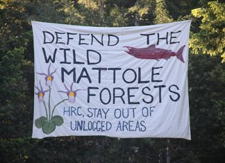 A banner protesting Humboldt Redwood Company (HRC) logging in the Mattole, April 29, 2014. Photo: QueRoule, Flickr CC.