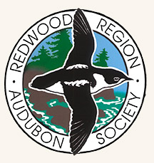 Redwood Region Audubon logo