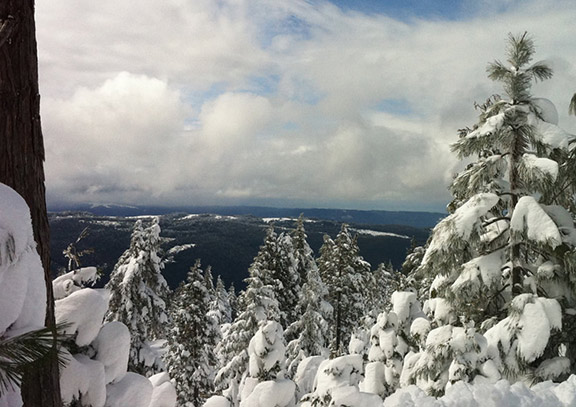 View from Titlow Hill looking south, in snow. Photo: John Abela, Flickr CC.