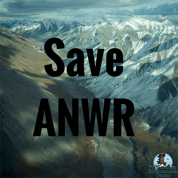Sign on to Save ANWR