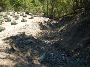 Stream Relocated for Grow Site. Photo: NEC