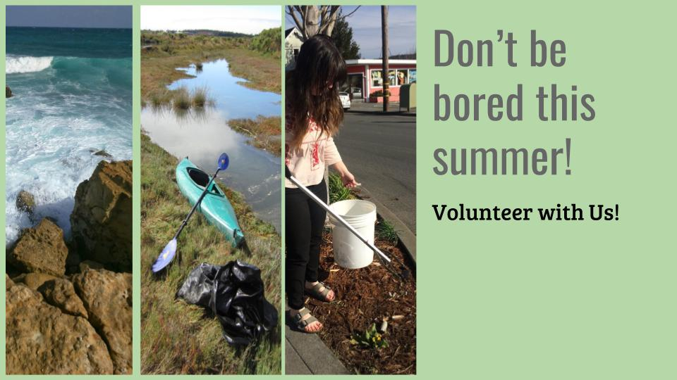Volunteer with the NEC this summer