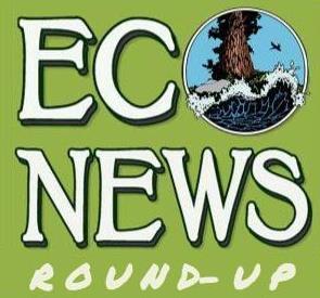EcoNews Report Roundup: Latest environmental news stories