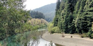 Eel River Canyon is part of the proposed Great Redwood Trail Act. Photo: Carodean Road Designs, Flickr CC.
