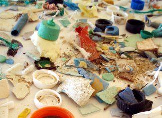 Examples of plastic marine debris. Photo: NOAA Marine Debris Program, Flickr CC.