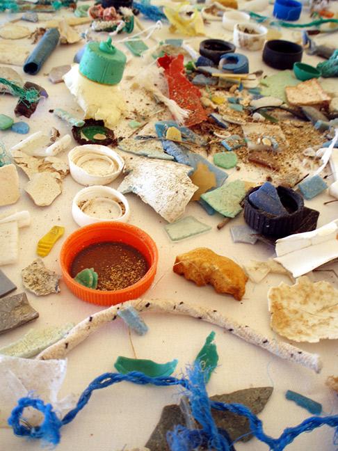 Plastic Pollution a Pervasive Problem