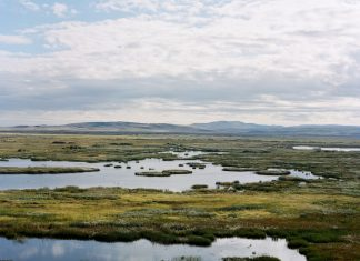 Malheur Wildlife Refuge. Photo: Mathew Foster, Flickr.com CC.