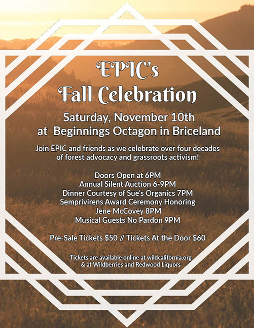 EPIC Fall Celebration flyer.