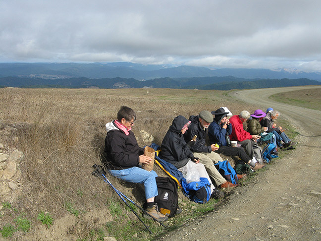 CNPS field trippers focus on lunch while getting to know what we will sacrifice for clean energy if wind turbines are built along Bear River Ridge Road. Photo: Carol Ralph.