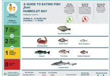 California Office of Environmental Health Hazard Assessment's fish advisory guide for Humboldt Bay.