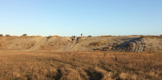 """Tracks from illegal ORV use crisscross the """"Super Bowl"""" site in the dunes near the City of Eureka's Samoa Airport property. Photo: J. Kalt."""
