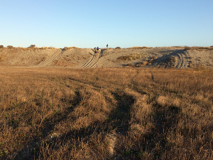 "Tracks from illegal ORV use crisscross the ""Super Bowl"" site in the dunes near the City of Eureka's Samoa Airport property. Photo: J. Kalt."