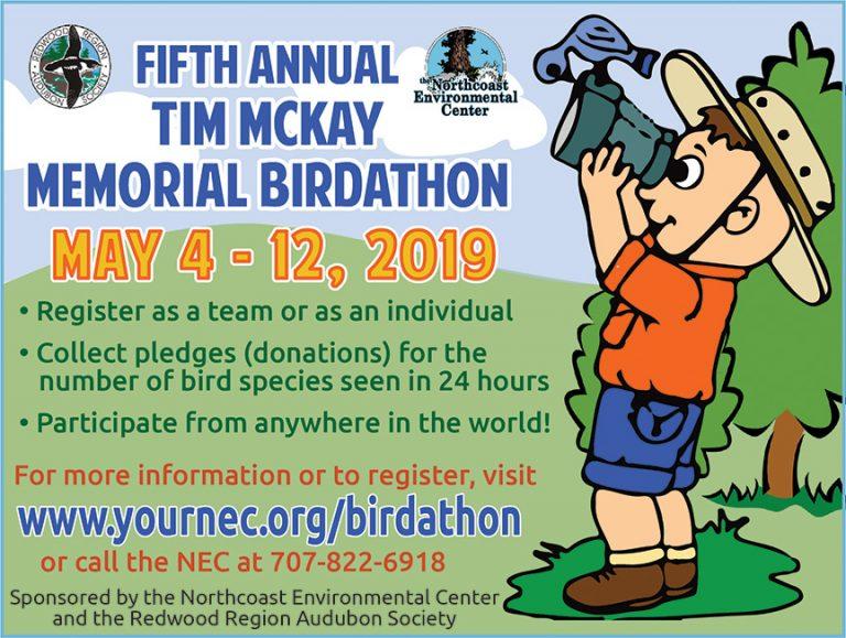 5th Annual Tim McKay Memorial Birdathon – May 4-12