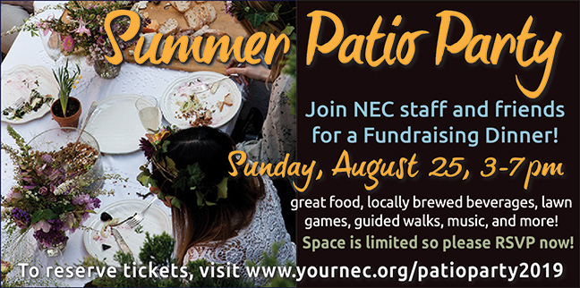 Summer Patio Party – Aug. 25