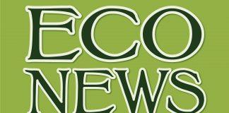 EcoNews Report logo