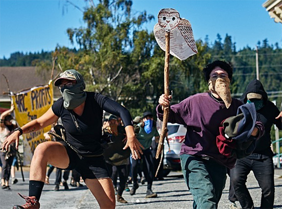 Forest defense supporters rally at the Humboldt Redwood Company office in Scotia in September. Photo: @blockade.babes, Instagram.