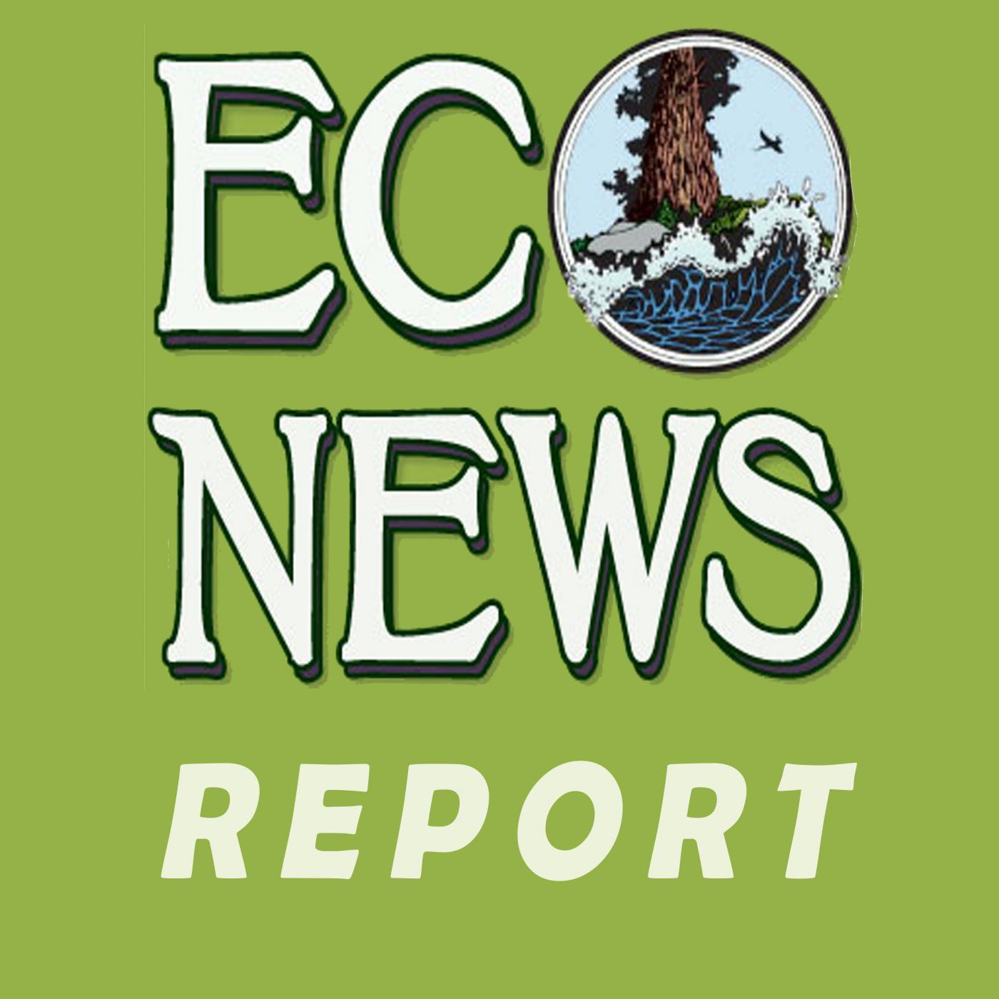 EcoNews Report